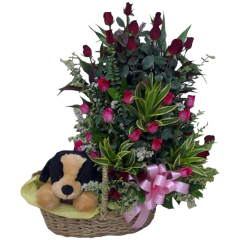 rose arrangement gift flowers stuff toy same day delivery reliable Philippine online flower shop